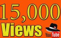 Provide High Quality 15,000+YOUTUBE videos views