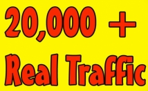 Give you 20,000 Guaranteed USA Visitors to your site with proofs