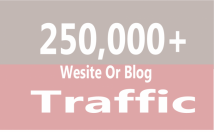 Send 250,000+ Web Traffic to your site From Canada, USA, Uk or any Country with proofs