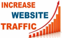 Give 300,000 High Quality Web Visitors From Any Country Safely