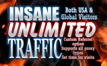 Send traffic 30,000 REAL visitors to anywhere online