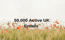 Give 50,000 UK Emails Users For Your Campaign