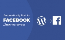 give Wordpress Plugin to auto post to facebook
