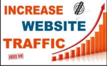 Generate and Drive Over Thousand Traffic For You