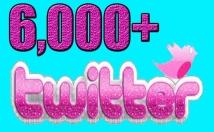Provide you 6,000 Guaranteed Twitter Real Followers.